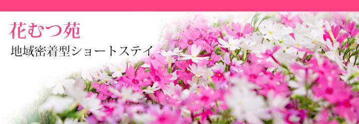 花むつ苑 ショートステイ